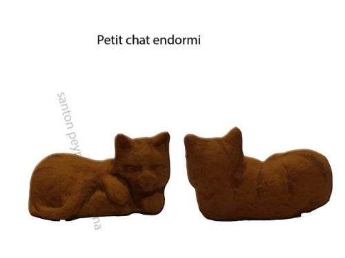 Petit chat endormi