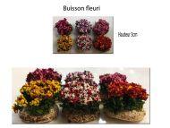 6 Buissons fleuris