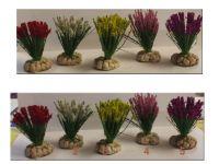 Roseaux fleuris